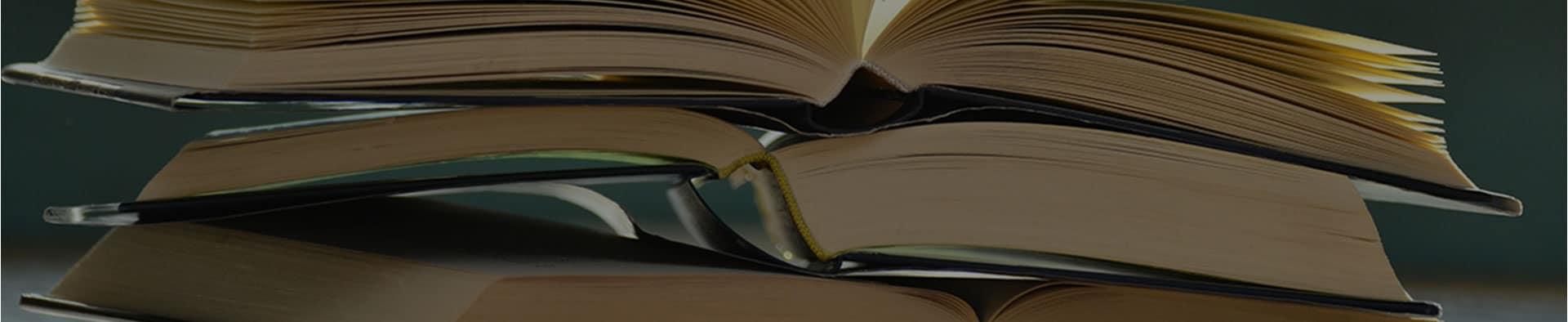 Libros de Moisés Barrio Andrés